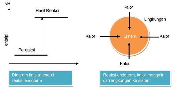 Reaksi eksoterm dan endoterm chemistry and my life contohnya pada reaksi antara barium hidroksida dan ammonium klorida kalau kita pegang wadah akan terasa dingin karena adanya aliran kalor dari lingkungan ccuart Choice Image