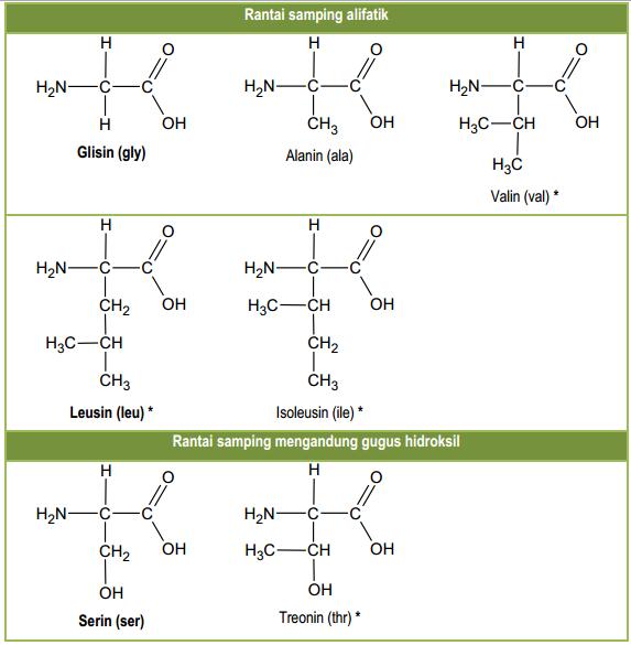 Struktur-Protein-dan-Jenis-Jenisnya-300x231 Struktur Protein dan Jenis-Jenisnya