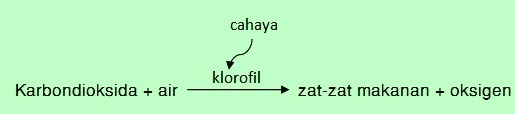 W1siZiIsIjIwMTUvMDQvMDcvMjMvMzMvMTkvNjI5L0xlc3Nvbl9UYWJlbC5qcGciXSxbInAiLCJ0aHVtYiIsIjYwMHhcdTAwM2UiLHt9XSxbInAiLCJjb252ZXJ0IiwiLWNvbG9yc3BhY2Ugc1JHQiAtc3RyaXAiLHsiZm9ybWF0IjoianBnIn1dXQ Komponen Biotik